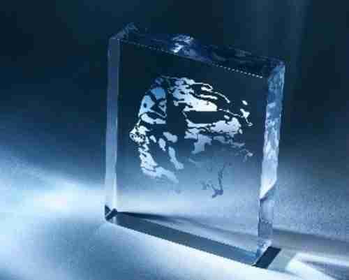 Prémio Abel. O troféu, em cristal, tem nele incrustada a efígie de Niels Abel.